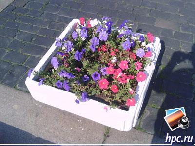RoverPC G6: пример фото (jpg, 1600x1200, 1,1Мб)