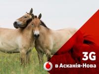 3G в Аскании-Нова. Vodafonе расширил 3G покрытие на юге Украины