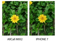 AllCall MIX2 против Iphone 7: сравнение камер
