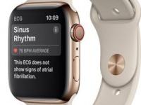 Открылся предзаказ на Apple Watch Series 4