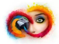 Adobe пугает судом пользователей старых версий Photoshop