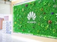Объявлена дата выхода первого телевизора Huawei