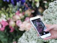 Цветы  с доставкой - оригинально и незабываемо