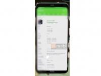 Смартфон Google Pixel 4 XL получит дисплей 6,23″ QHD+ и чип Snapdragon 855