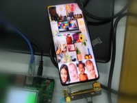 Экран Honor Vera 30 с отверстием под две камеры на фото