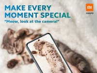 Непонятный смартфон Redmi Note 9S продвигается посредством самого страшного рекламного оружия — котиков