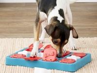 SMARTlife: Игрушки для собак - технологии в помощь! Обеспечение правильного развития вашего питомца