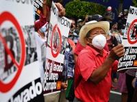 Сотни граждан Сальвадора выступают против легализации биткойна